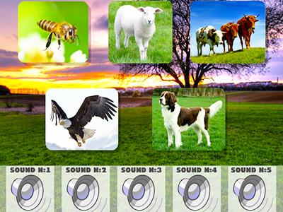 Hayvan Seslerini Tanıma