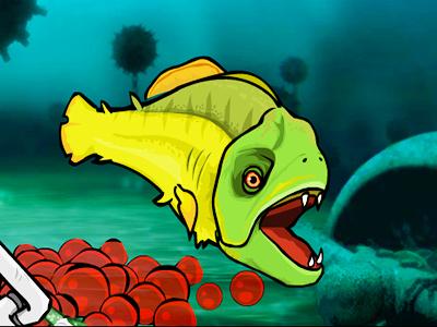 Pirana Balığı 4