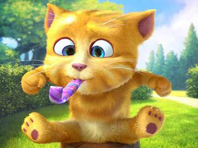 Sarı Kedi 2