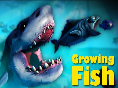 Büyük Balıklar