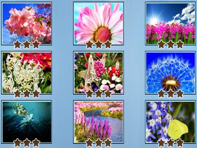 Çiçek Yapbozları