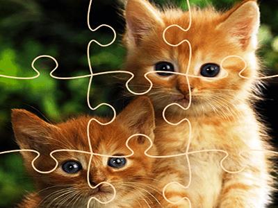 Kedi Yapbozları 3