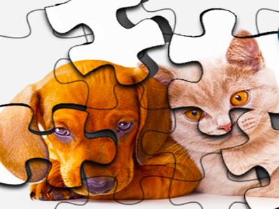 Köpek ve Kedi Yapbozları