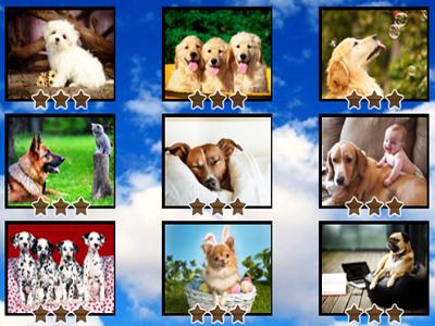 Köpek Yapbozları 2