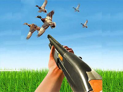 Ördek Avcısı 2
